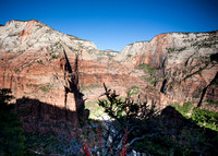 On the Angels Landing Trail - Zion